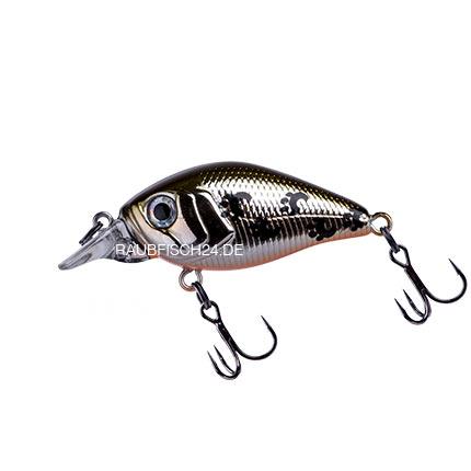 Fishycat iCat 32F SR X06
