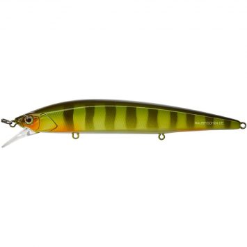 Illex RERANGE PERCH