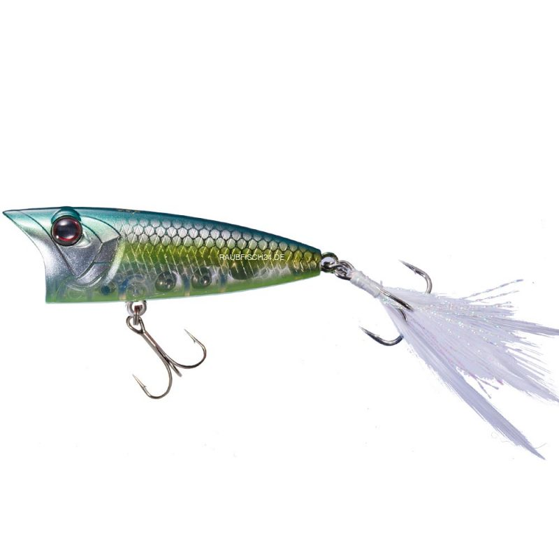 OSP Louder GS Jade Shad Chart Belly GG64