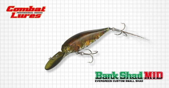 Ever Green Bank Shad MID