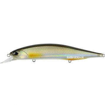 DUO Realis Jerkbait 120SP Pike Limited Silver Roach