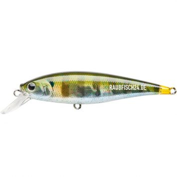 Lucky Craft Pointer 78 Baby Blue Gill